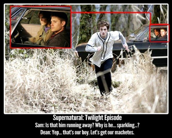 Image Result For Supernatural Meme Twilight Funny Pinterest