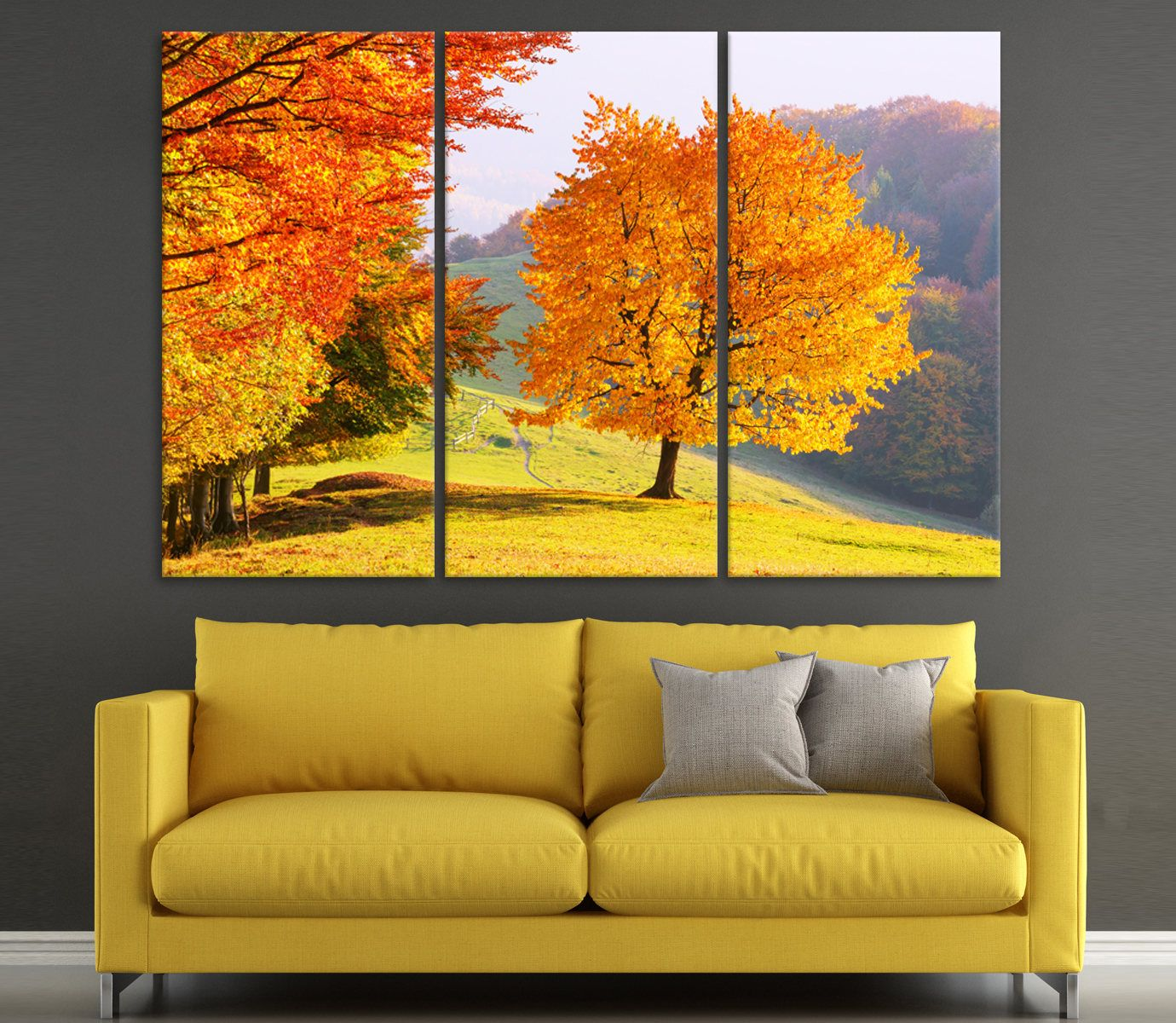Canvas art Majestic beech tree with sunny beams photography forest ...