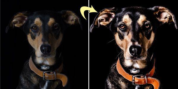 Fotobewerking: oplichten ,kleur en contrast verbeteren, schaduw en lichteffecten , verscherpen.(voor en na)