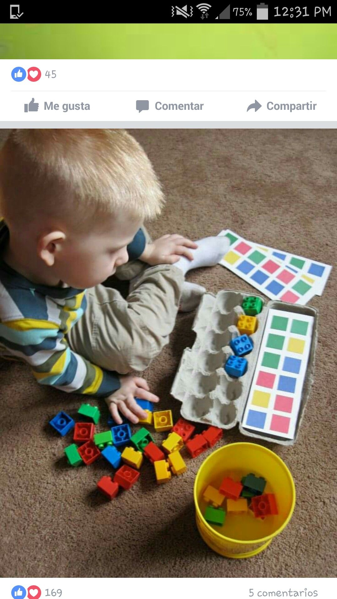 Goede Color sorting pattern matching lego blocks egg carton and SK-27
