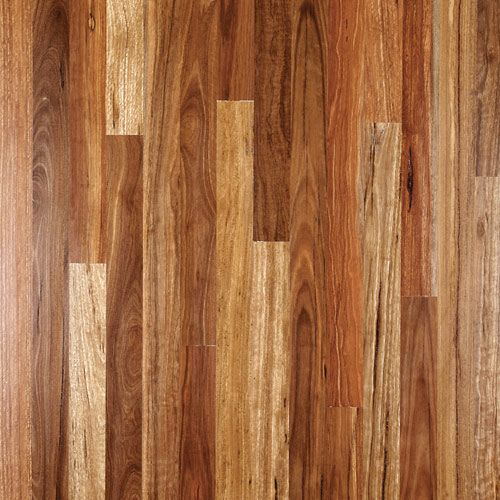 Spotted Gum Spotted Gum Flooring Engineered Timber Flooring Flooring