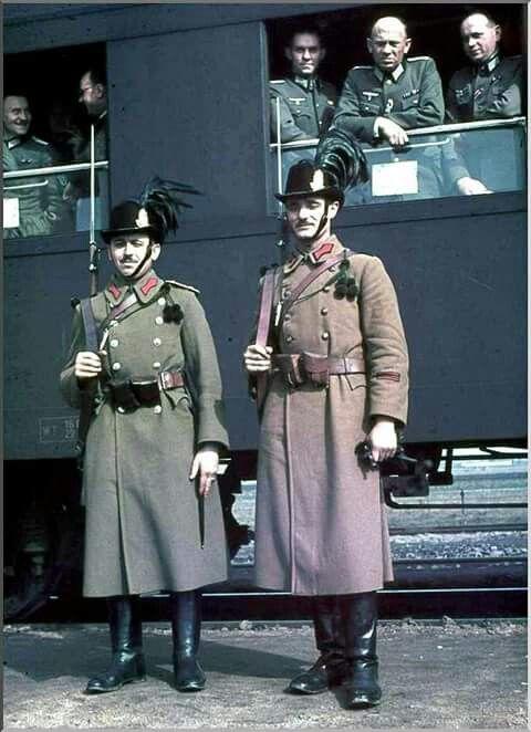 Hungarian gendarmeries