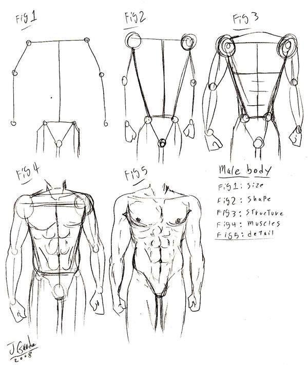 Proceso De Realizacion Del Cuerpo Humano Masculino Body Drawing Tutorial Male Body Drawing Body Reference Drawing