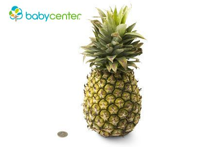 33 weeks: Your baby is proportioned like a pineapple when it comes to weight -- a little over 4 pounds. (Length: more than 17 inches, head to heel.) #howbigisyourbaby @babycenter