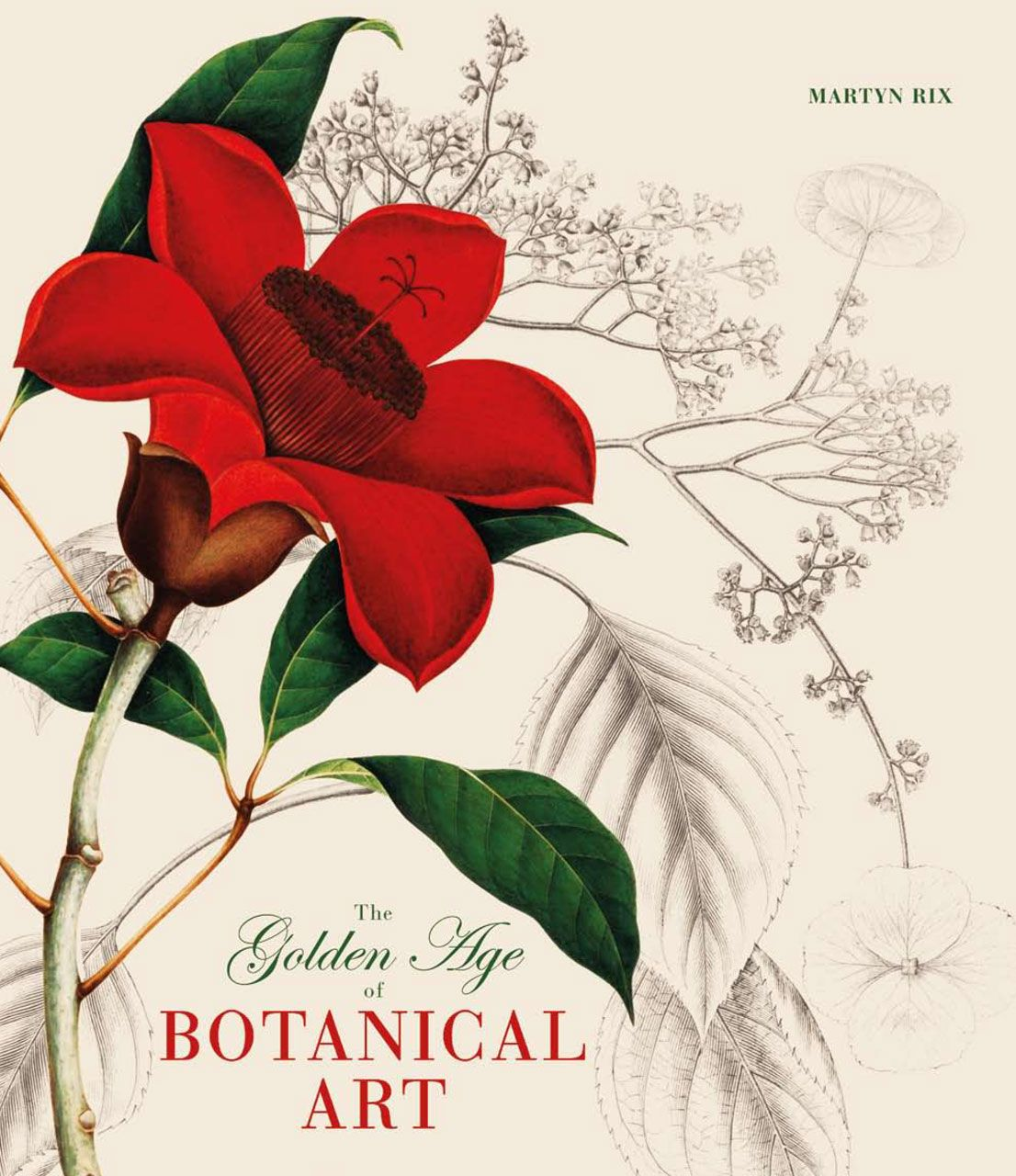 The Golden Age Of Botanical Art Botanical Art Botanical Illustration Botany Illustration