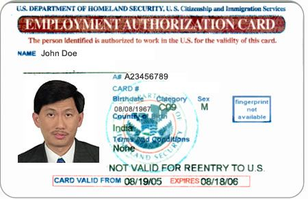 Understanding the 3 Main Categories of Green Card Applicants - sample employment authorization form