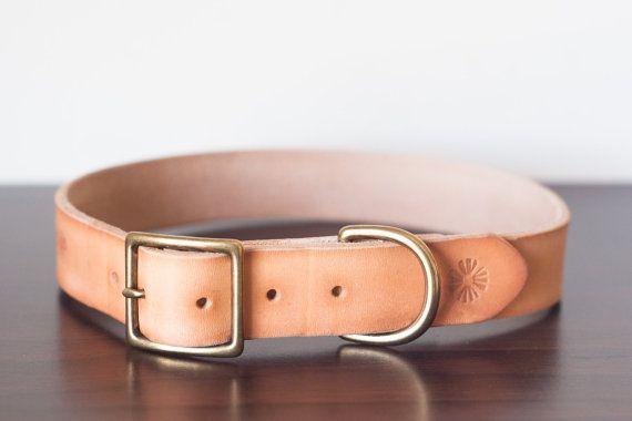 Battle Collar 4 Inch 3 Layer Leather Dog Collar With By Olicollars Basic Dog Training Dog Potty Training Training Your Dog