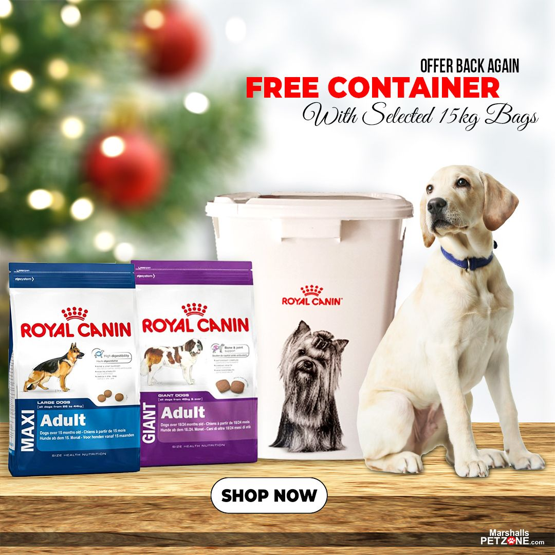 Royal Canin Giant Adult 15kg Best Dry Dog Food Royal Canin Dog