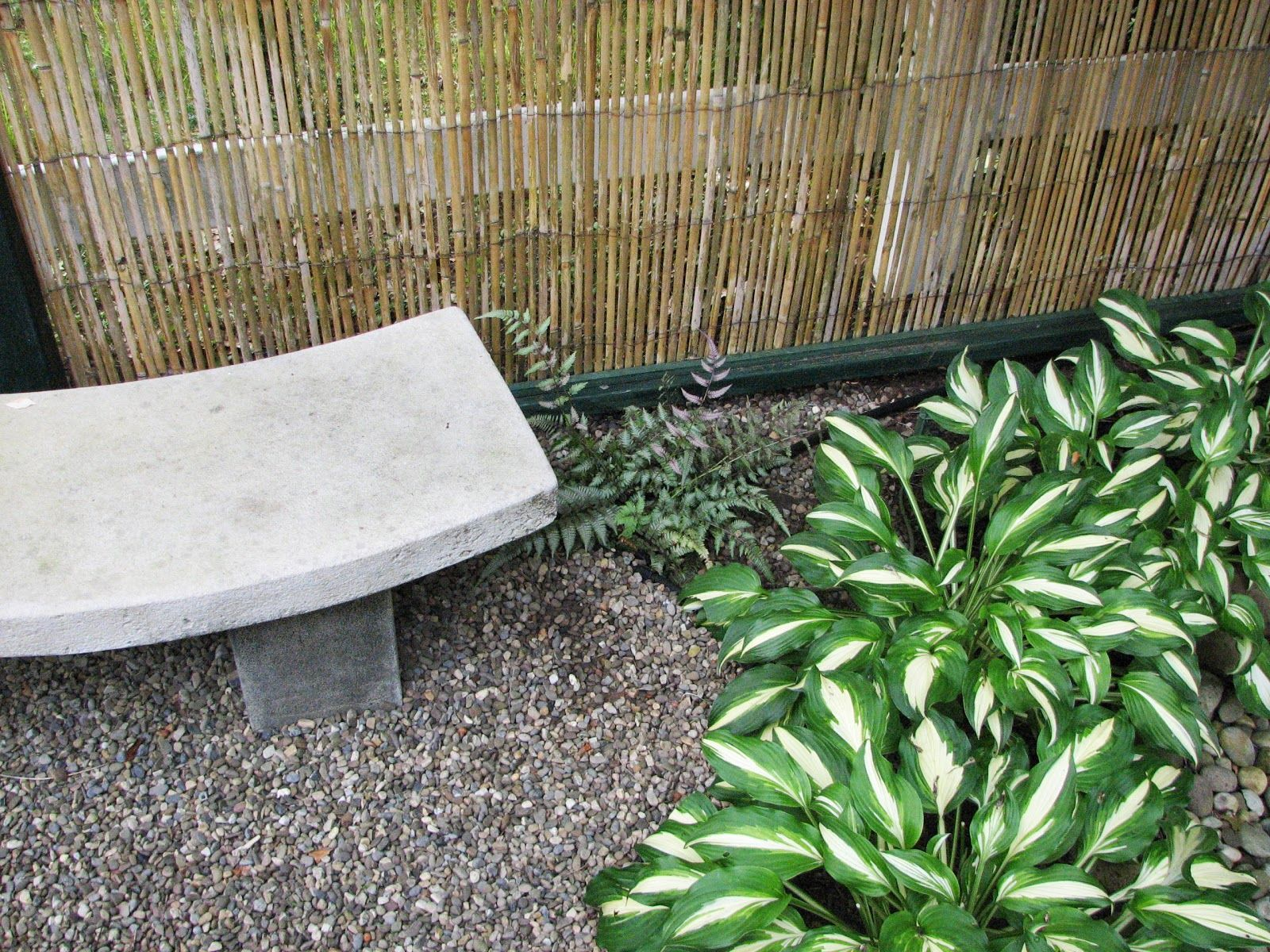 My Zen Garden Sitting By The Bench