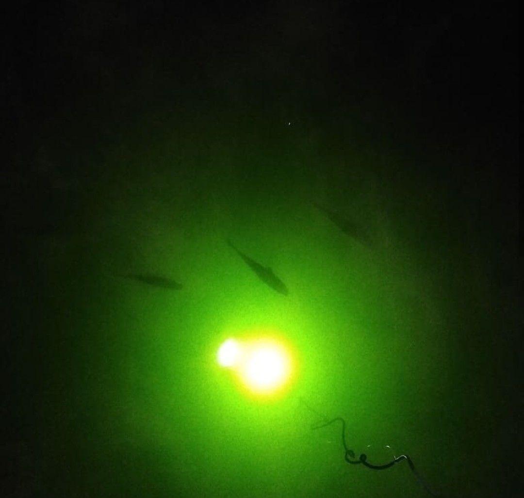 3450+ Lumens of Fish Attracting Green Light 30 day