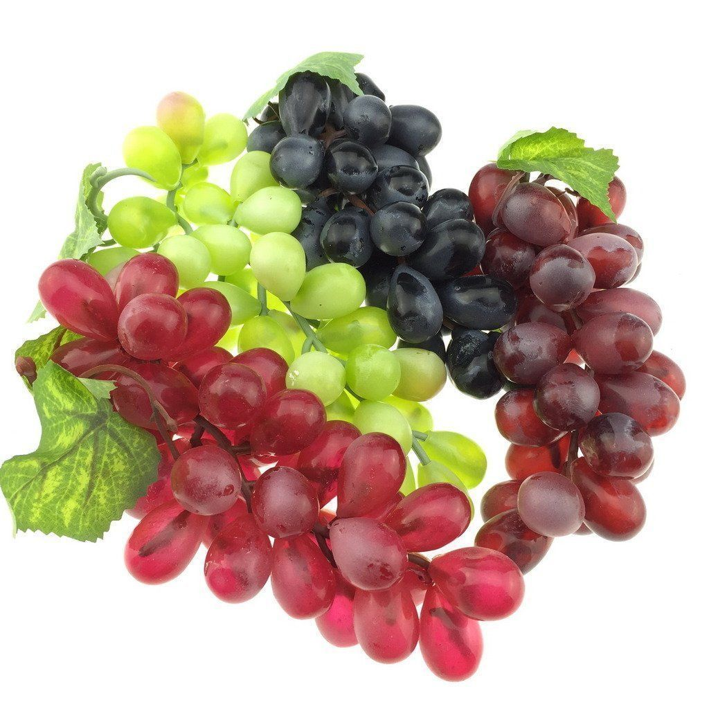 Pin By Shelley Powlison On In The Garden Grape Plant Growing Grapes Grape Tree