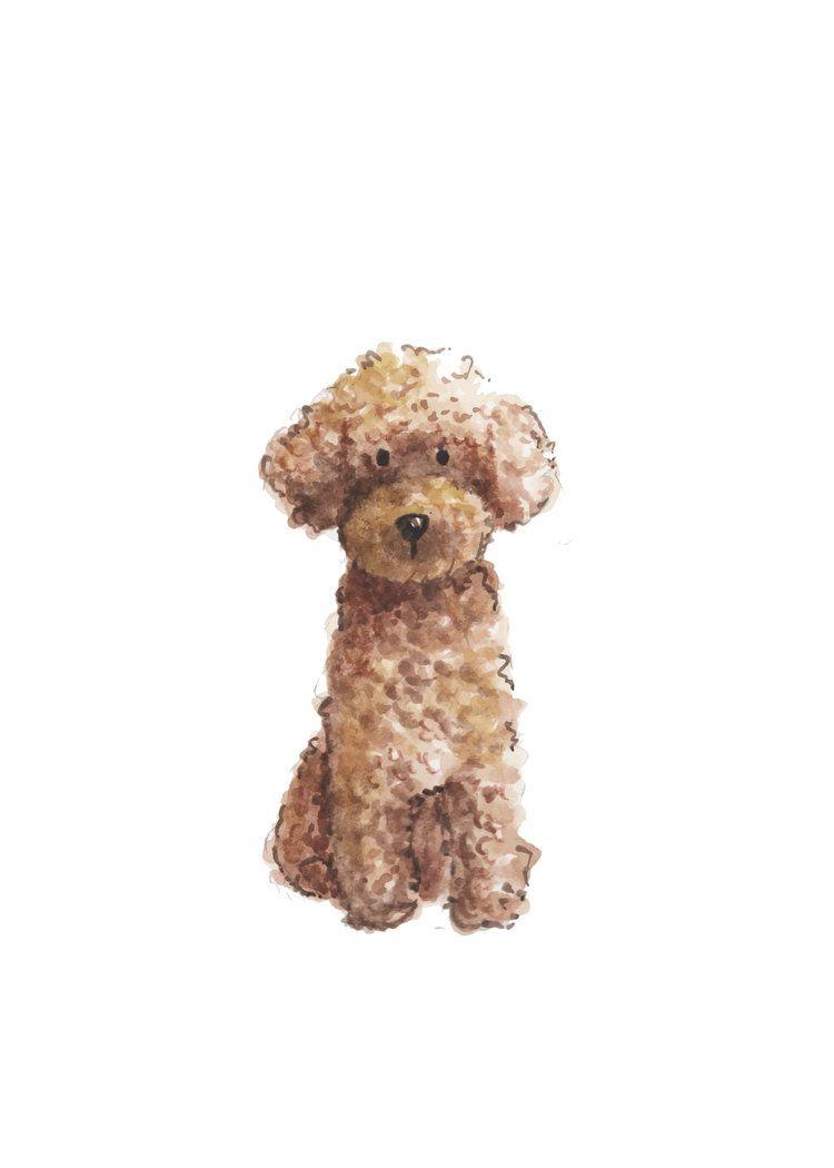 Poodle 5x7 Jpg Dog Print Dog Illustration Poodle