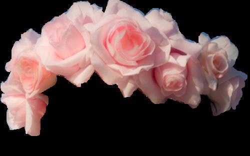 Cute Asian Fashion Lollimobile Com Flower Crown Tumblr Transparent Flowers Orange Flower Crown