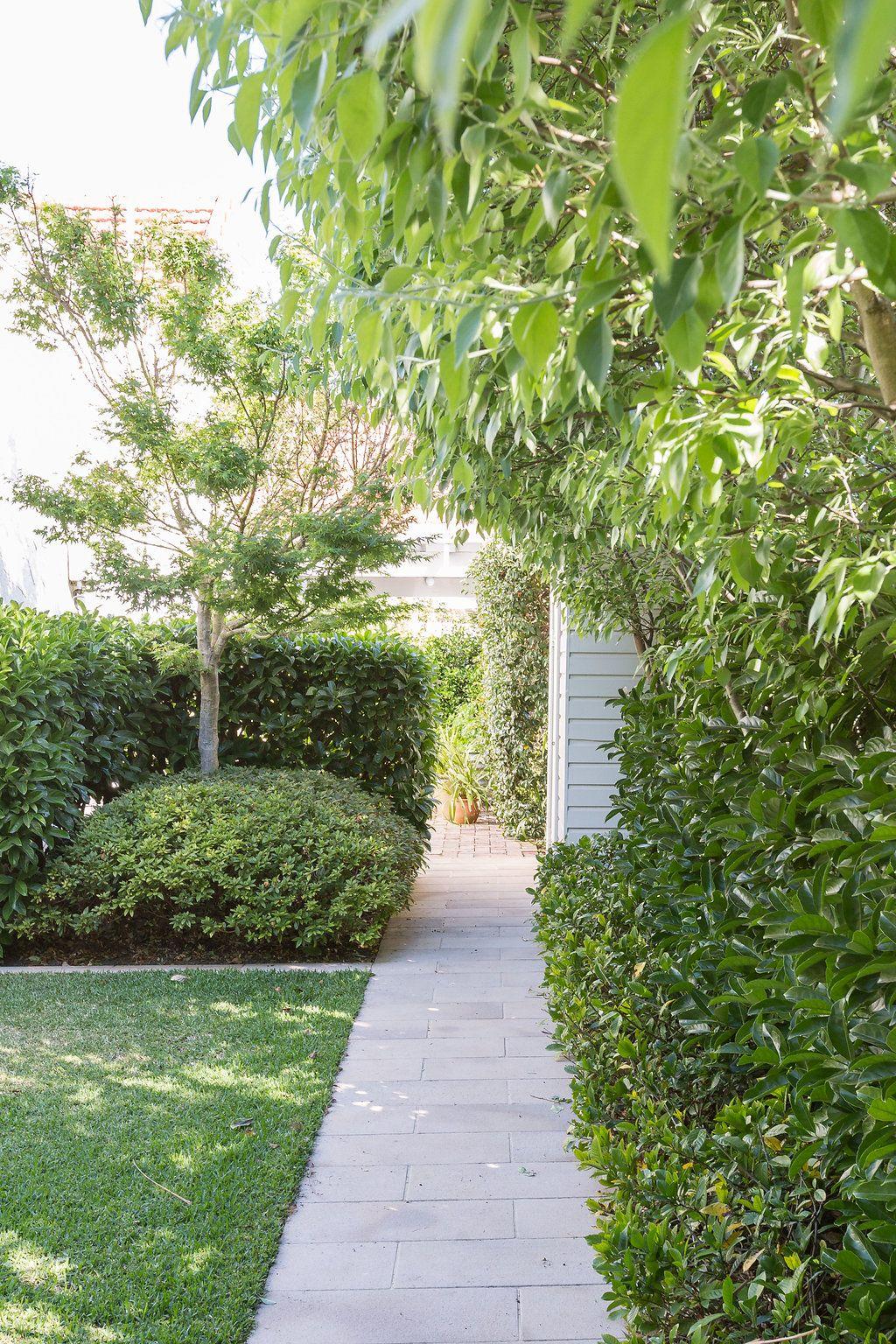 Garden Path In 2020 Landscape Design Garden Landscape Design Garden Pathway