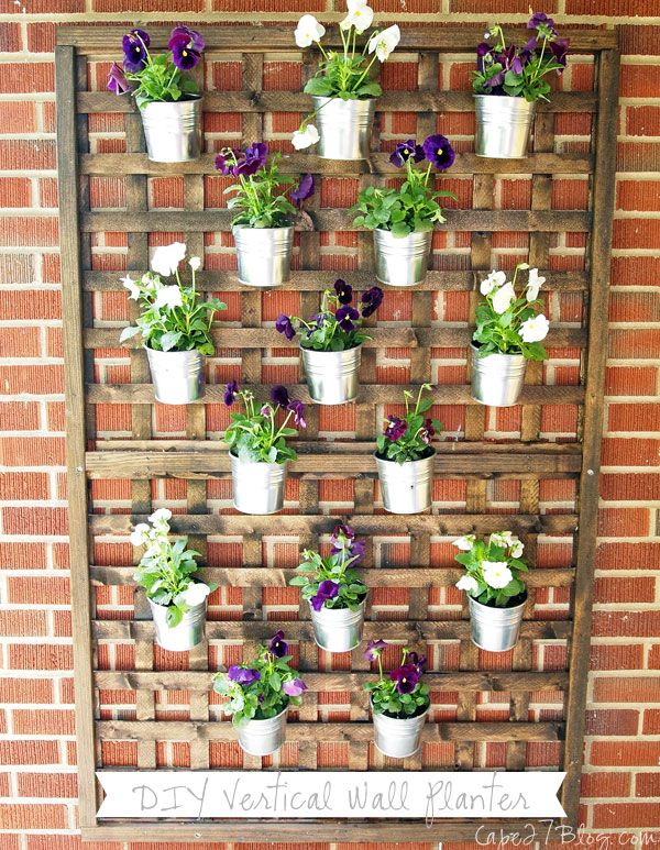 I Love This Idea For A Container Garden Vertical Check Not Too Busy Easy To Switch Out With Flower Herbs Diy Wall Planter Cape