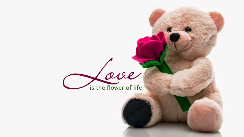 Happy valentine day message wallpapers valentine day wallpapers explore valentines day greetings and more m4hsunfo