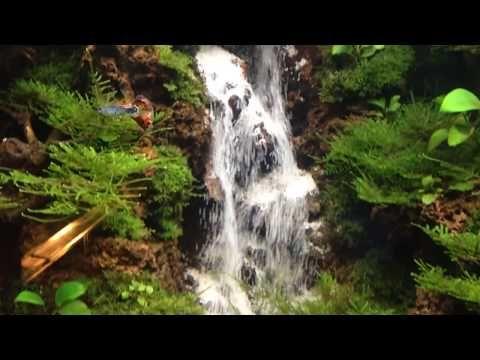 Waterfall Aquascape Tank 35 35 60 Airterjunpasir Youtube Kids