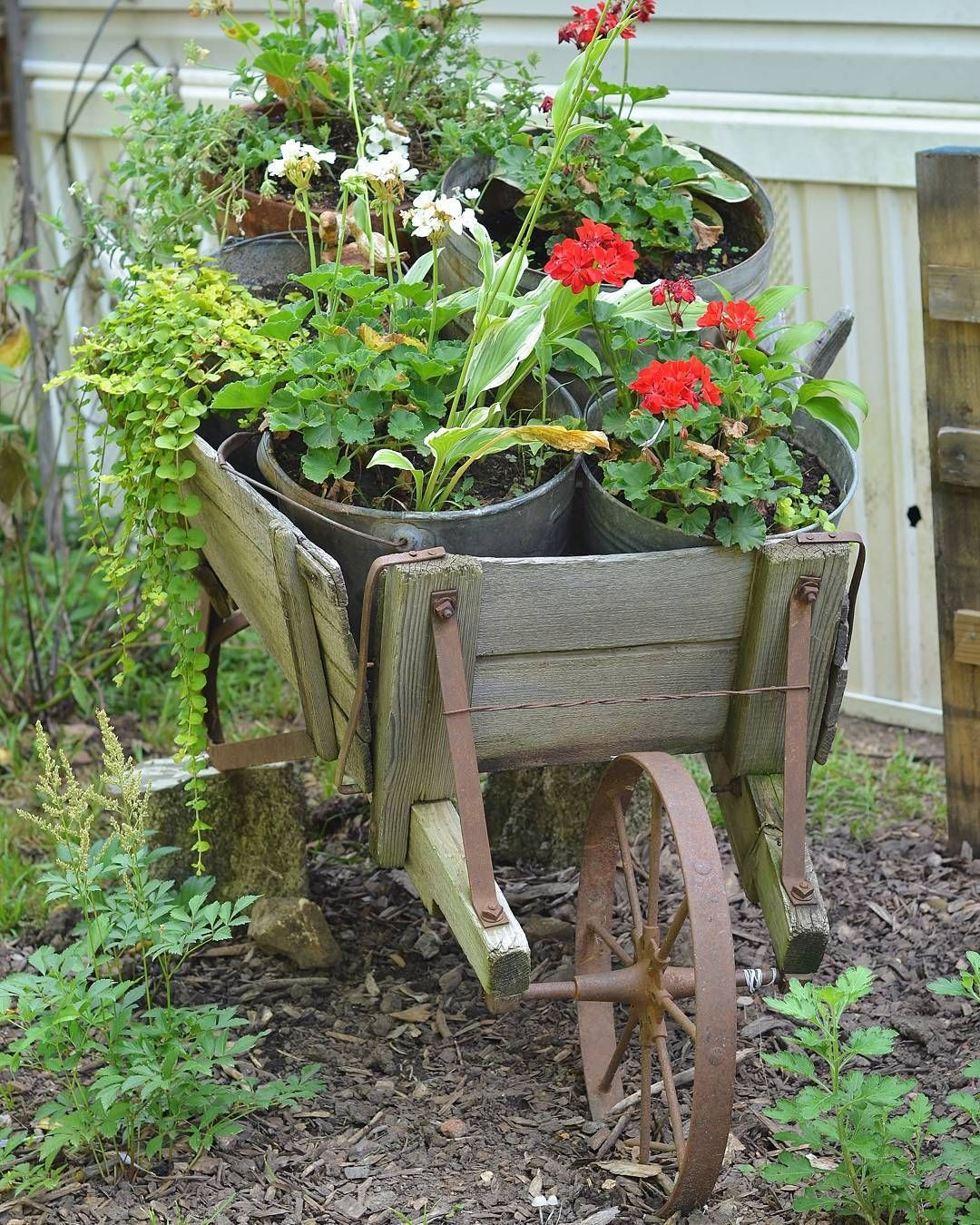 Garden decor out of junk  See this Instagram photo by thefreckledfarmhouse u  likes