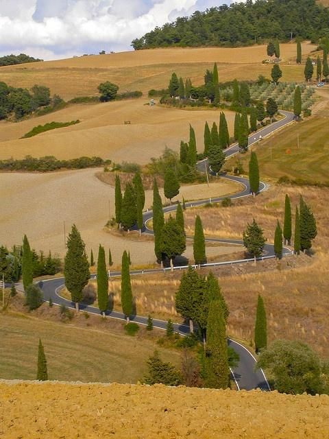 The road from Pienza to Montichiello in Tuscany, Italy