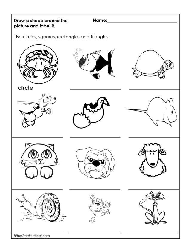 1st Grade Geometry Worksheets For Students Ideas For Class