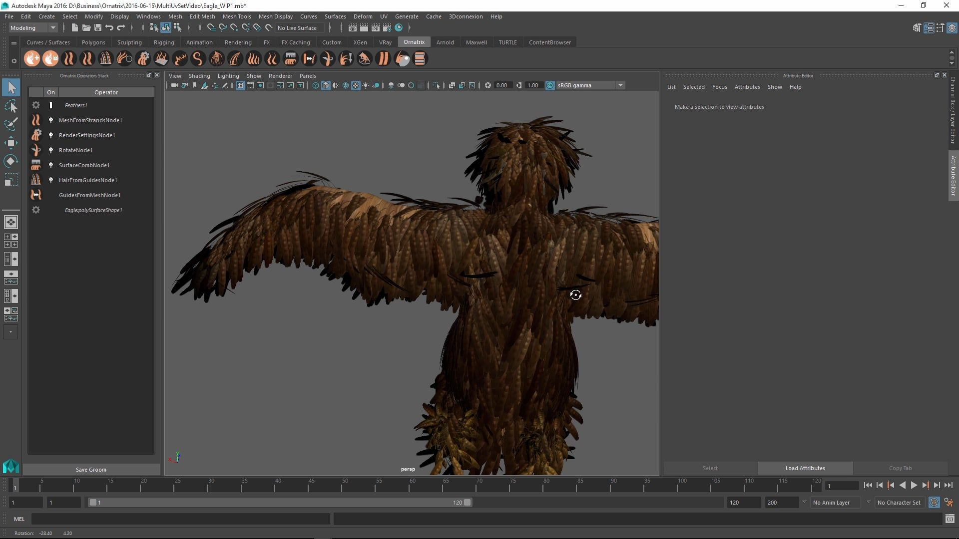 Ornatrix for Maya 101: Feather texturing | Feathers