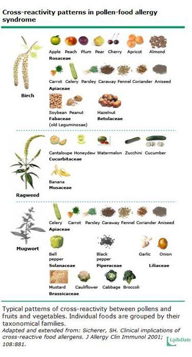 Battling Eczema Food Allergy Treatment Food Allergies Pollen