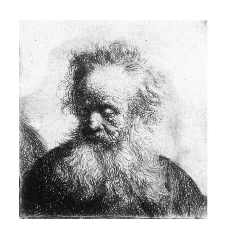 Rembrandt Van Rijn Old Man With Flowing Beard Looking Down Left 1631 Etching Portre Resim Tablolar