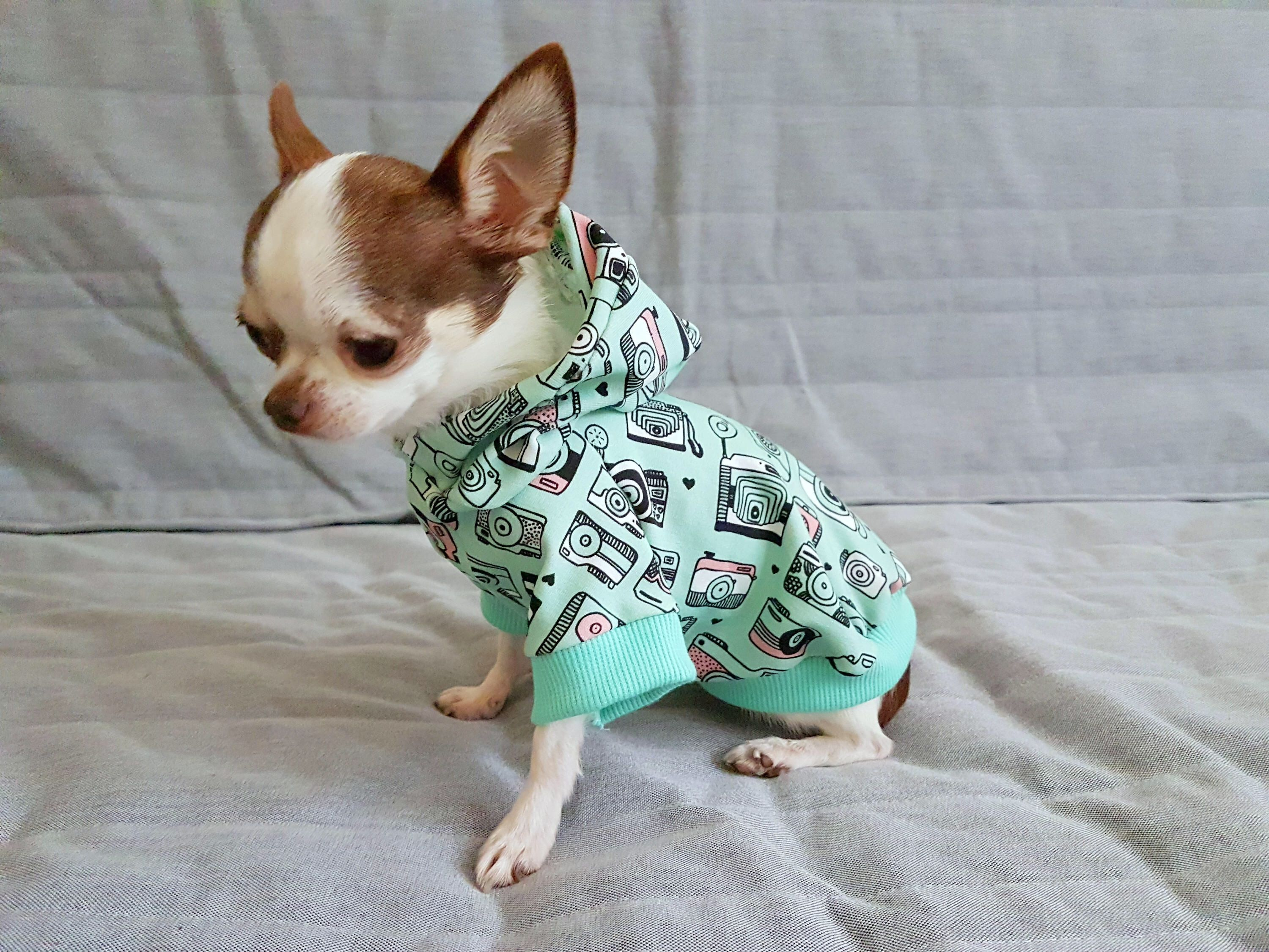 Pin By Kates Kitsch On Chihuahuas Yorkie Dogs Dog Hoodie Yorkie