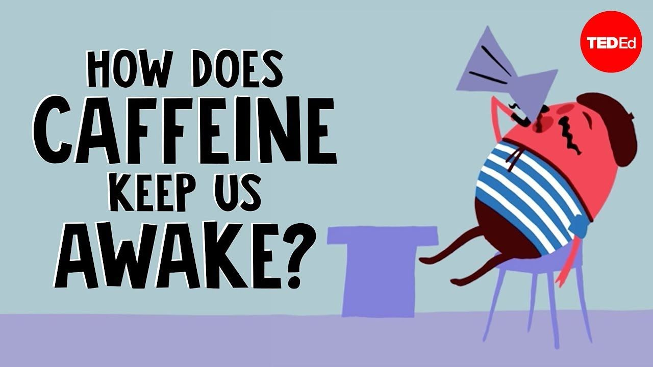 How Does Caffeine Keep Us Awake Hanan Qasim Youtube Caffeine Classroom Images Education Lesson Plans