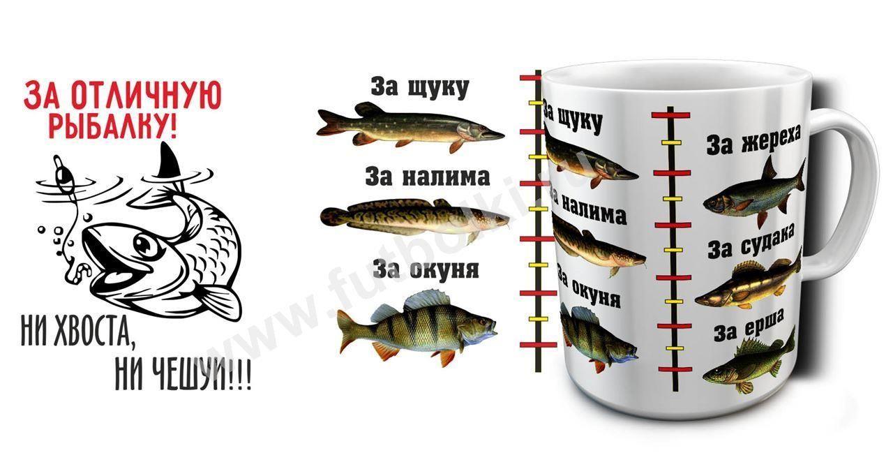 Картинки по запросу за рыбалку надпись   Рыбалка, Картинки ...