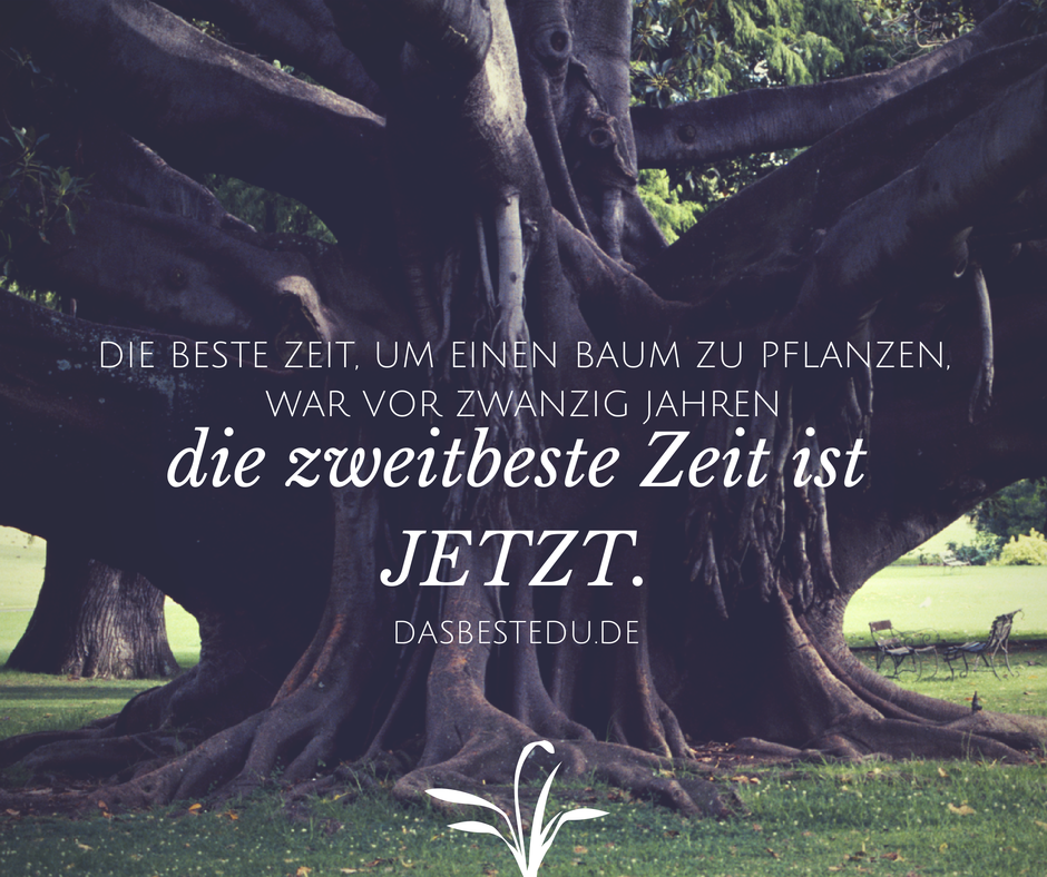 Baum Verschenken Spruch