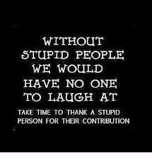 Funny Quotes About Silly People Stupid People Stupid Person Funny Quotes