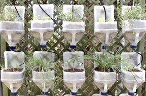 Ejemplo de cultivo vertical con elementos reciclados