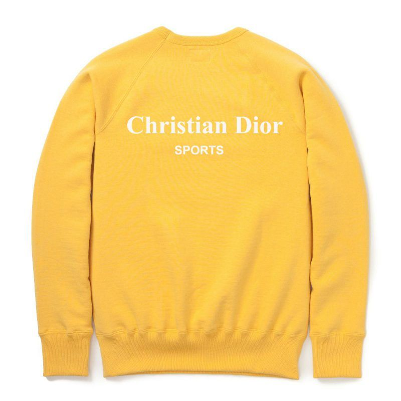 3082977ffee Christian Dior Sports Sweatshirt in 2019 | Sweatshirt Collection ...