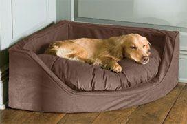 Dog corner bed--Our beloved pet children like comfort also!!! Great dog & dogbed!!  l