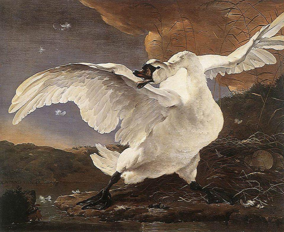 Jan Asselyn, The Threatened Swan