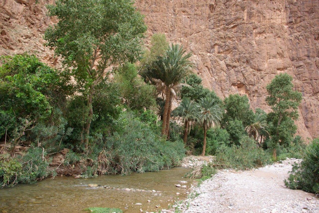 maisons berbere au maroc - StartPage by Ixquick Picture Search
