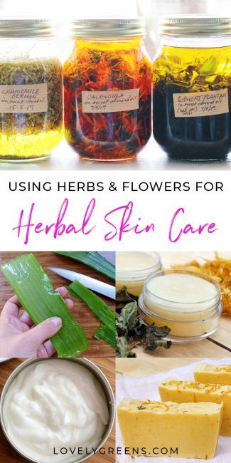 An introduction to how to use herbs and flowers to make natural herbal skin care. Covers herbal extracts recipes using them to make lotions, creams, and other beauty items. Part of the DIY Herbal Skin Care series #lovelygreens #herbalskincare #diybeauty