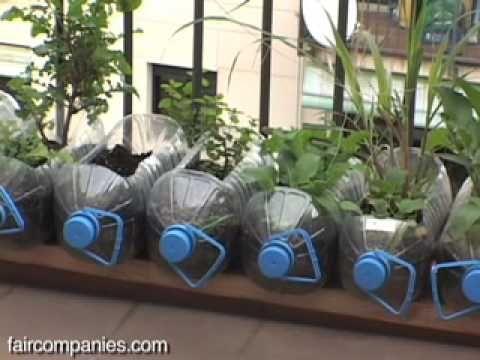 Cu nto dinero es necesario para crear un huerto urbano capaz de producir especias y algo de - Invernadero casero terraza ...