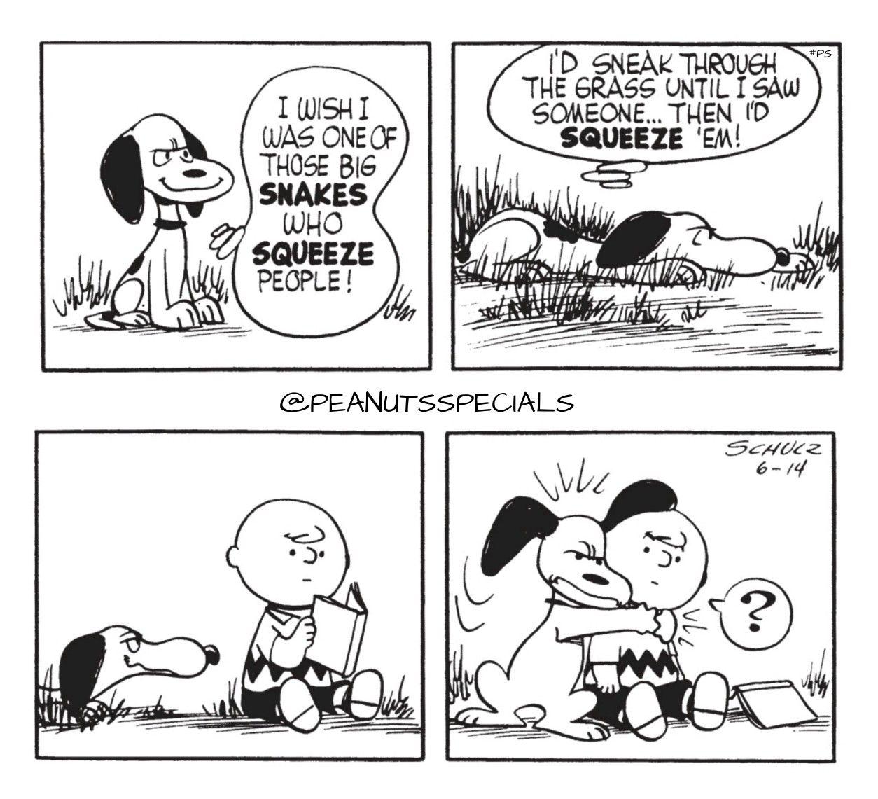 Snoopy Dog Fan