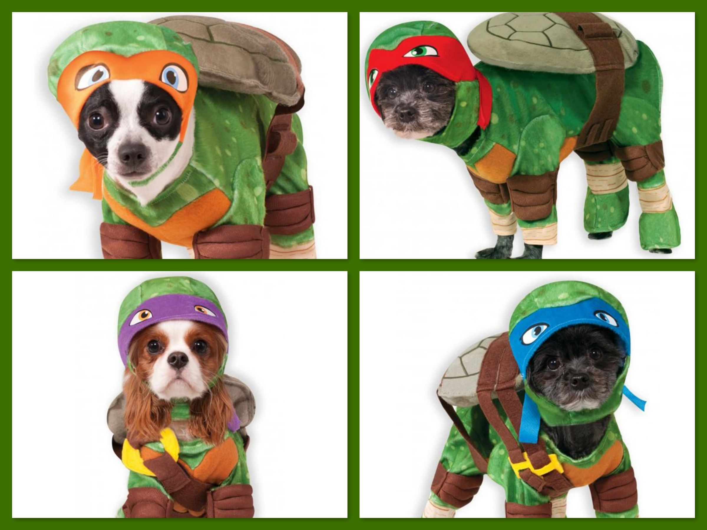 Teenage Mutant Ninja Turtle Pet Costumes, Dog Turtle Halloween ...