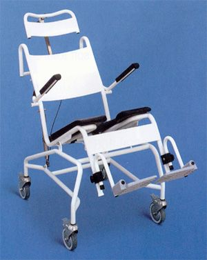 Handicap Shower Commode Chair From Accessible Environments Inc