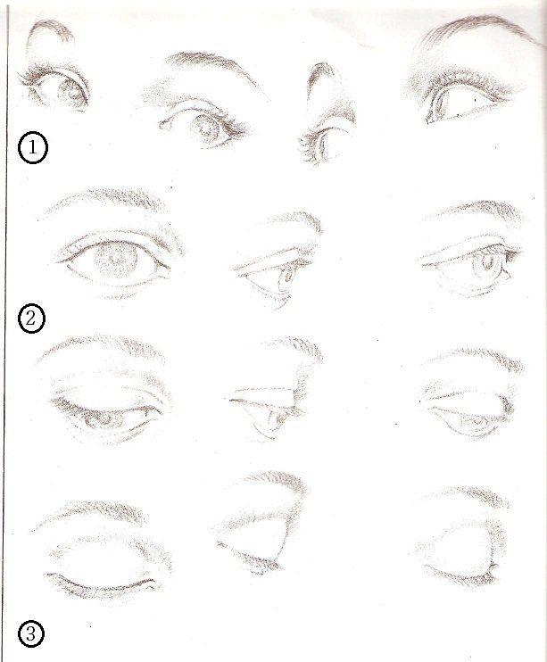 Como Dibujar Ojos De Perfil Buscar Con Google Human Drawing Drawing Techniques Drawing Tutorial