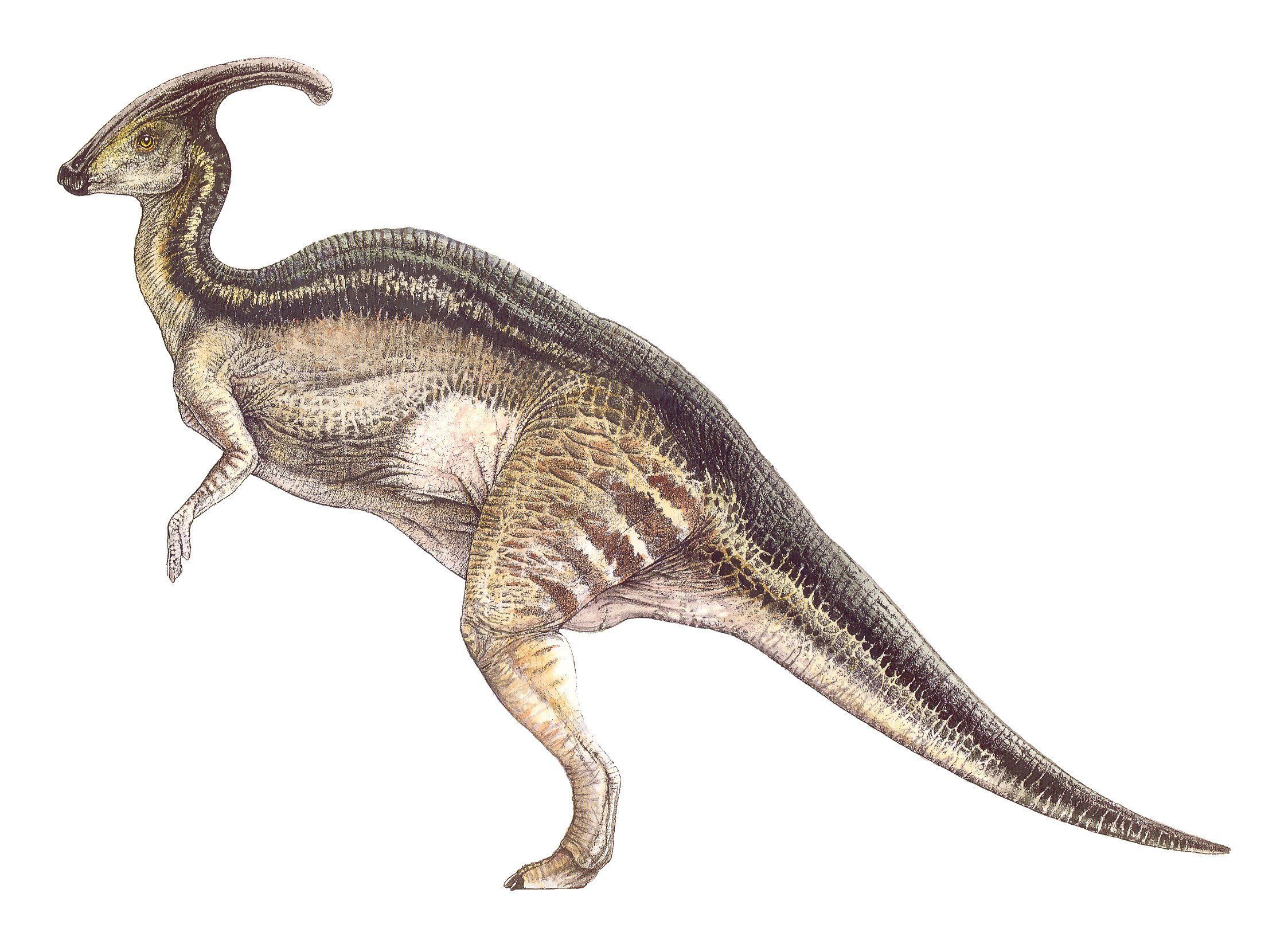see concept art of the jurassic world dinosaur human hybrids from an earlier version of jurassic park description from i searched for this on