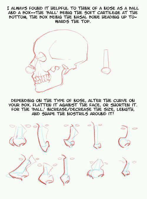 조금 더 다양해진 코 그리는 방법 자료! 성냥같은 기본틀을 아래처럼 다듬으면 다양한 코를 연출할 수 있대요. 이번엔 예시그림에 눈 위치까지 붙어 있어서 더 편하겠네요 (^▽^)o #코 #자료 #Pinterest