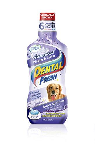 Dental Fresh Water Additive Advanced Plaque and Tartar