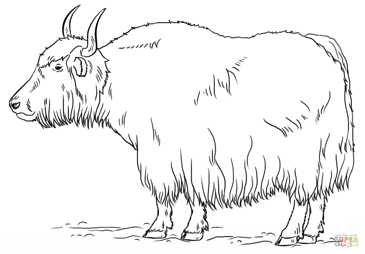 Coloring Page Yak Coloring Pages Cool Coloring Pages Coloring Book Pages