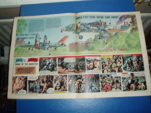 Http Www Ebay Co Uk Eagle Cutaways Pinterest Cutaway Baby