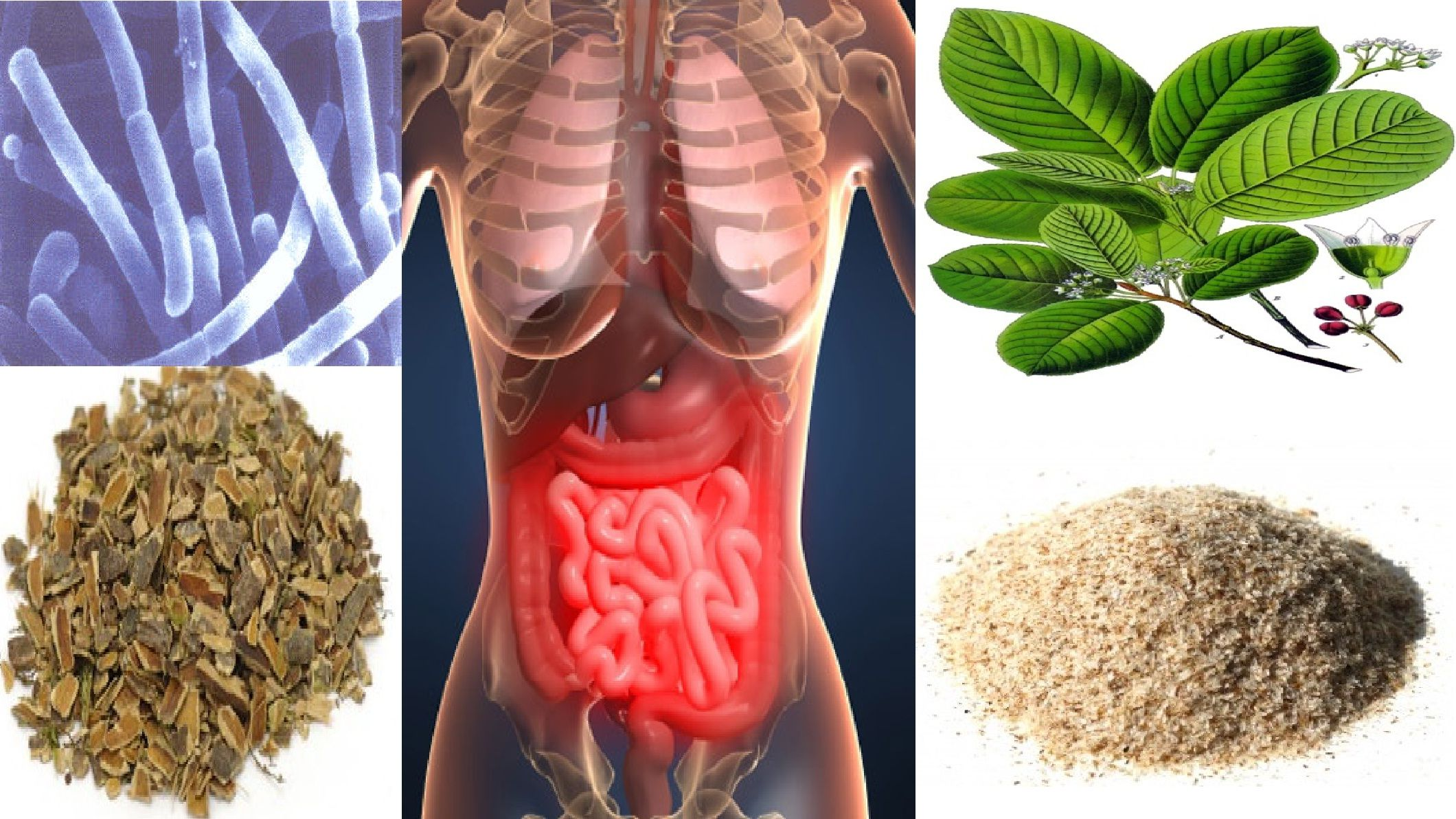 I Love Colon Cleansing #coloncleanse #coloncleanser #dietarysupplements #constipation #drozweighloss