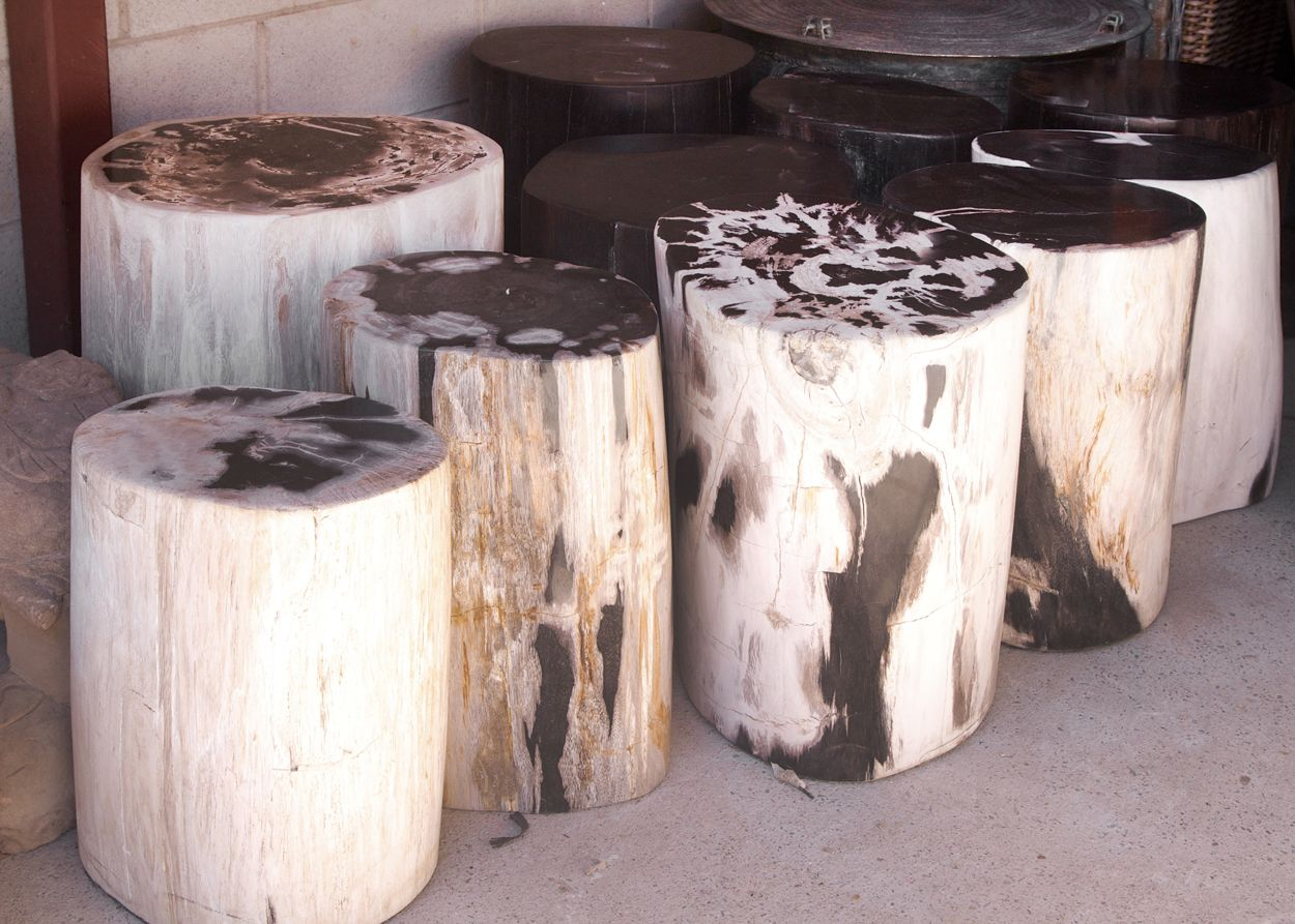 Amazing Fossil Wood Stools Orient House Specialises In Just Gmtry Best Dining Table And Chair Ideas Images Gmtryco